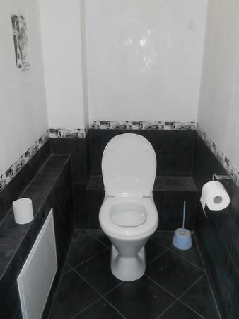 Туалет в черно-белом цвете фото