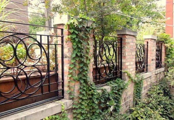 Забор из кирпича и ковки, увитый растениями